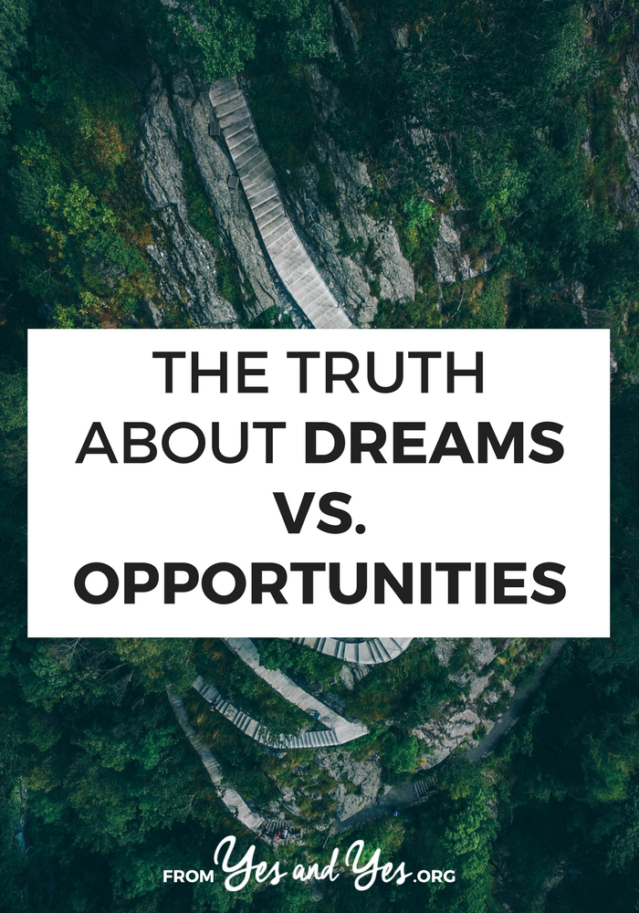 Who would win in a cage match of dreams vs. opportunities? Which one is healthier, more doable, and more sustainable? Click through for a pep talk about ambition, taking chances, and making shit happen.