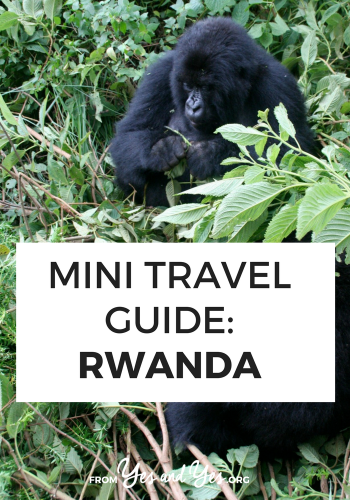 Looking for a travel guide to Rwanda? Click through for Rwanda travel tips from a local - what to do, where to go, and how to travel Rwanda cheaply, safely, and respectfully!