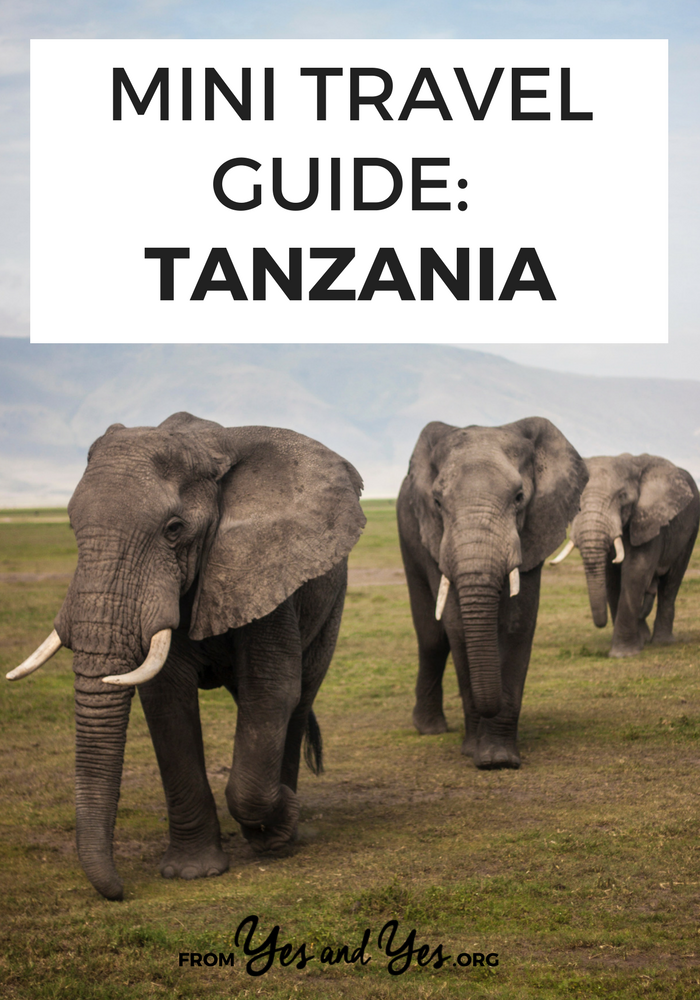 Looking for a travel guide to Tanzania? Click through for a local's best Tanzania travel tips - where to go, what to do, and how to do it all cheaply!
